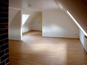 Komplett Renovierung Der Wohnung, Mit Laminatfußboden Und Einbau Einer  Paneeldecke